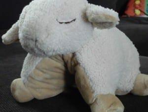 Tiniloo, coffret pour maman et bébé, le coussin Cloud B