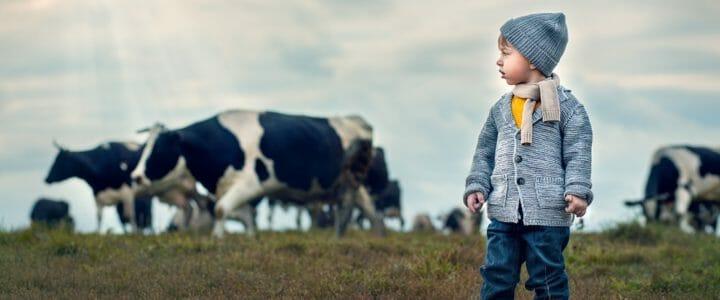 Biostime - lait infantile bio