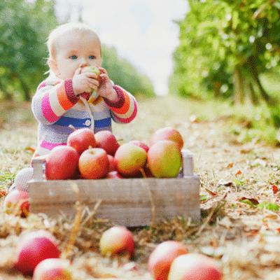 gourde-fruits-bio-bebe