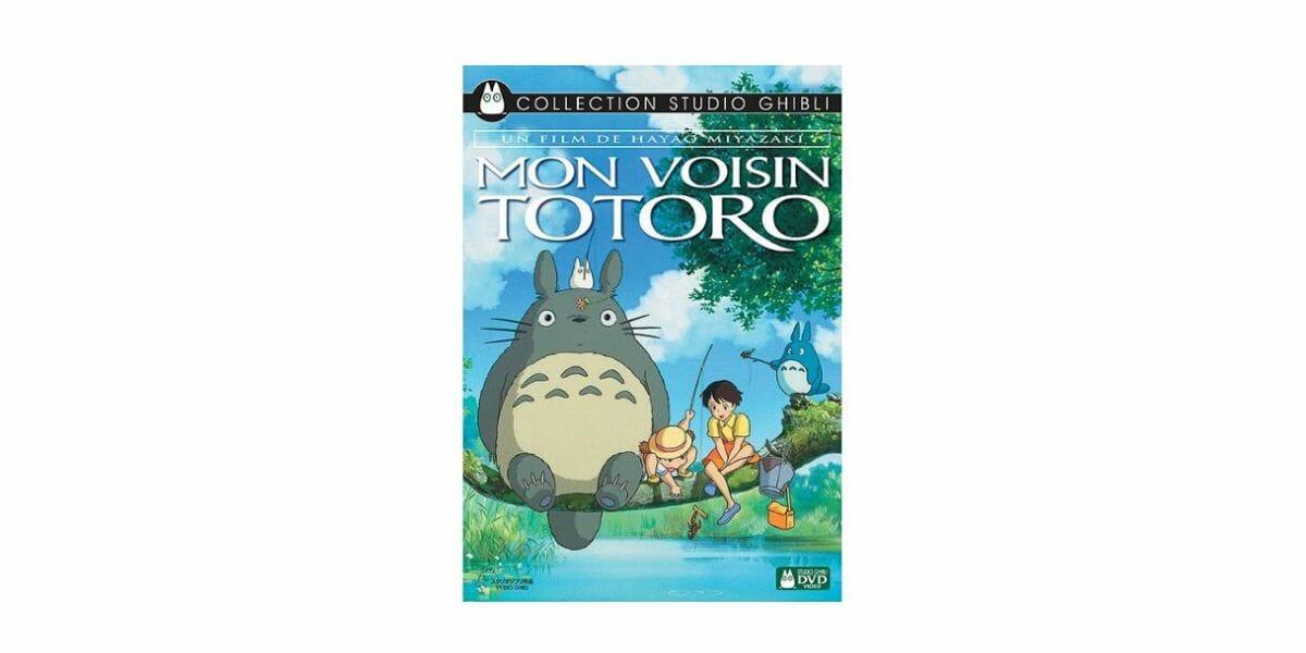 dessin-anime-totoro