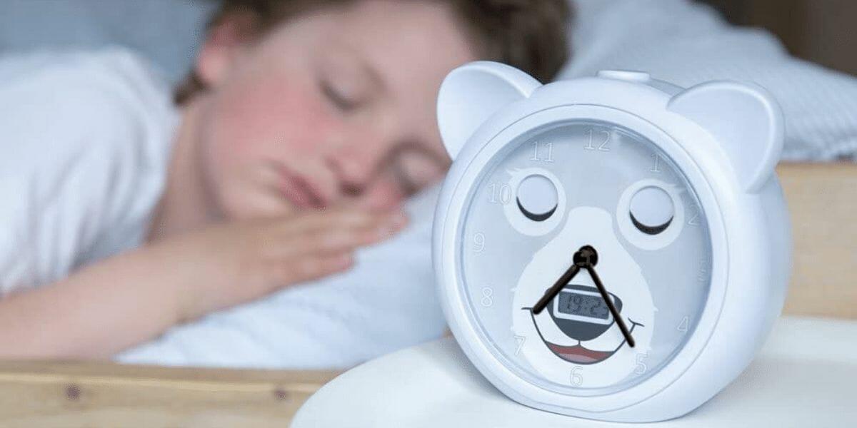 Réveil-pédagogique-enfant-Bobby-ours-Zazu