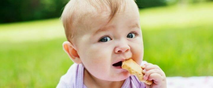 biscuit-bebe-bio